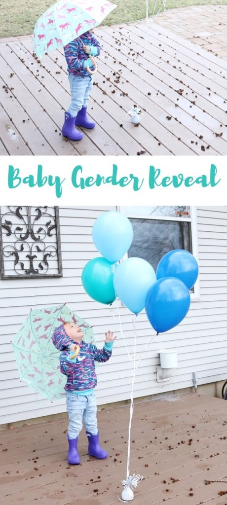 Baby Gender Reveal Idea - Click to see more pictures!