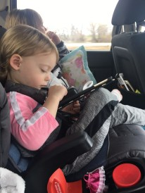 Family Road Trip Essentials (3)