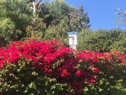 10050 Cielo Drive, A Los Angeles sulle tracce di Charles Manson