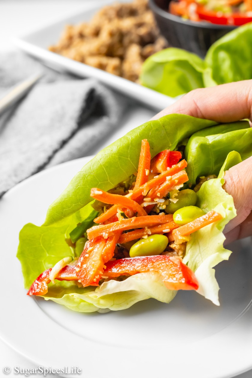 Ground chicken in a teriyaki sauce, topped with a perfect slaw then served in a lettuce wrap. These Teriyaki Chicken Lettuce Wraps are a healthier, delicious dinner!