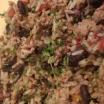 guilt free dirty rice