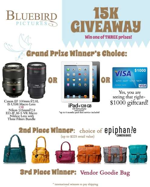 SugaShoc_Photography_Doylestown_PA_Giveaway