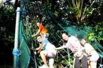 papakits-hanging