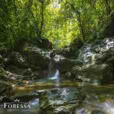 Foressa Trails Falls