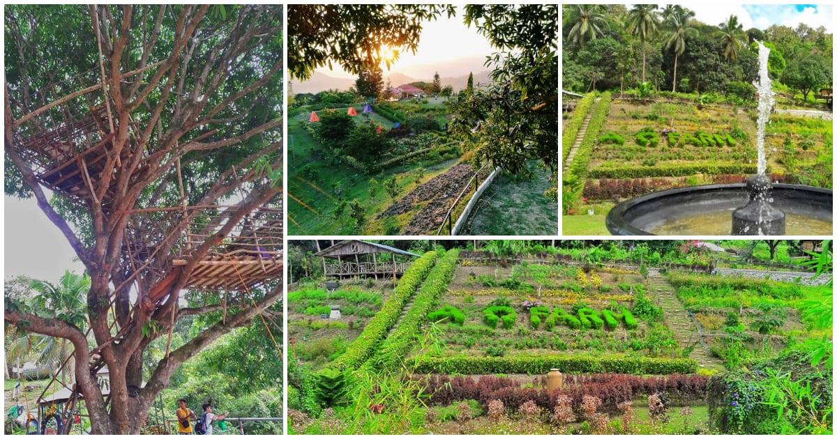 STUNNING photos of AO Farm in Toong, Pardo