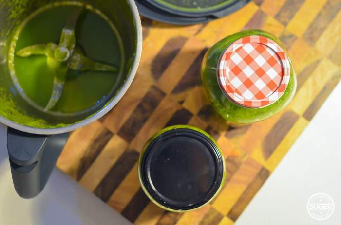 green juice smoothie for beginners and advanced-3