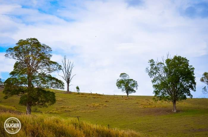 mary-valley-queensland-11