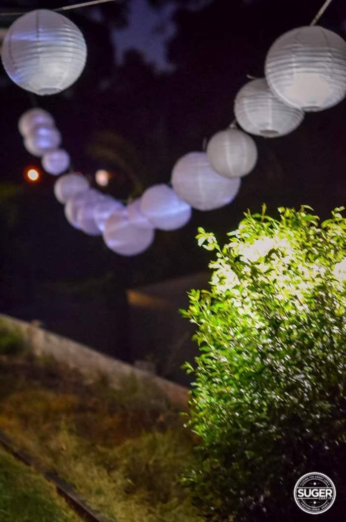 my backyard birthday party-4