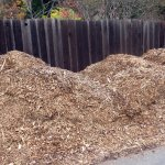 wood chip pile