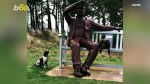【犬猫動物動画まとめ】Hilarious Video Shows A Dog Barking at A Giant Statue Wanting it To Throw Its Ball