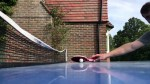 【犬猫動物動画まとめ】Dog Trying to Referee a Ping Pong Game