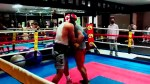 【犬猫動物動画まとめ】Walter Castillo VS Nordberto Casco - Alpha Dog Boxing Club / Prodesa Boxing