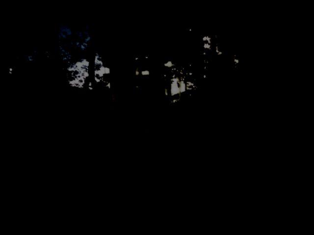 真っ暗な道
