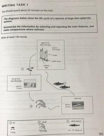 Diagram問題