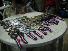 fm2_medals