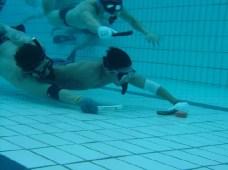 fm1_underwater