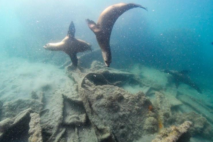 メキシコ 水中考古学 9