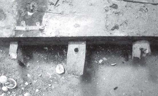 水中考古学 イスラエル 4