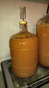 fermenting cyser