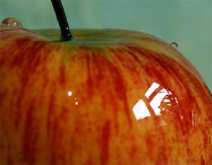 glanzende-appel