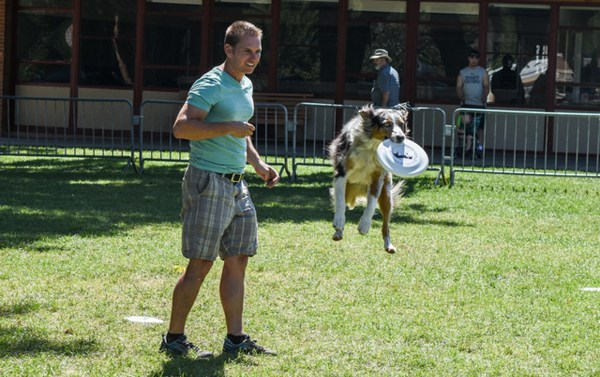 Because Animals Matter hosts annual Dog Day Spectacular ...
