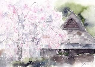 1903sakura-e1551331139139
