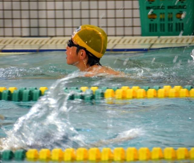 スイミングは四泳法を習得したら辞めどき?辞めるメリット・デメリットとは