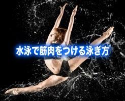 水泳 筋肉