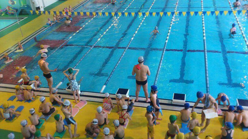 水泳 練習