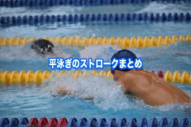 【平泳ぎストローク】回数を減らすポイント&練習(ドリル含)のコツ!動画で学ぶ軌道