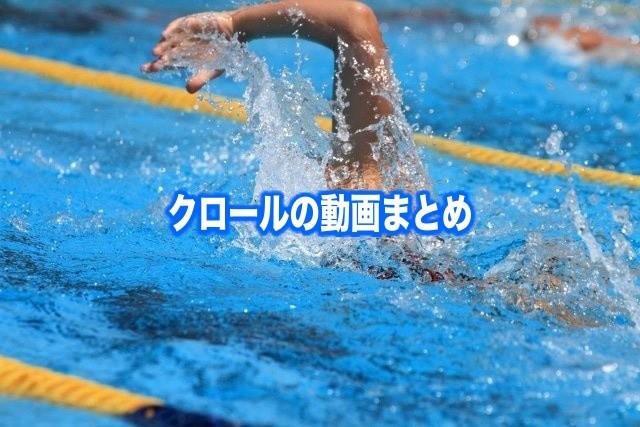 【クロール泳ぎ方の動画5選】水泳初心者から2ビート&長距離編!見るポイント