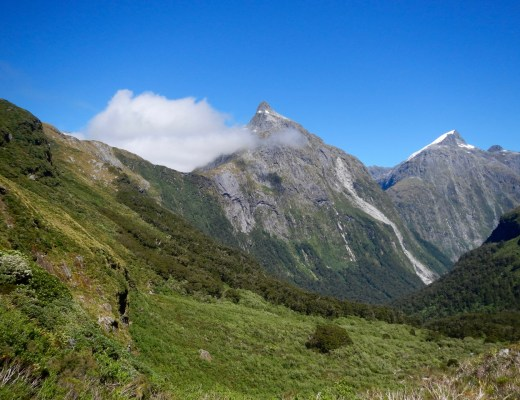 Snow capped peaks on the Milford Track.