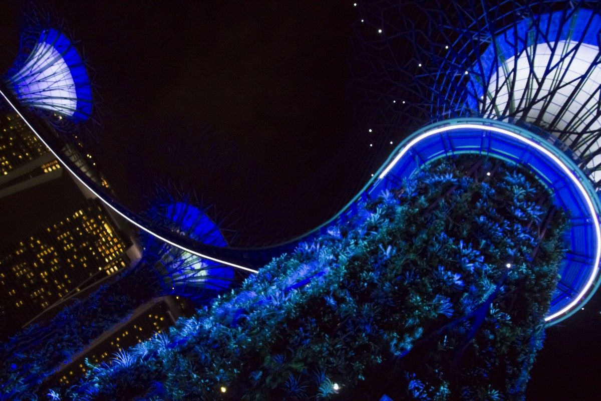 views of the Gardens by the Bay at night
