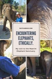 Suitcase Six encountering-elephants-pin-4-200x300 Encountering Elephants Ethically.