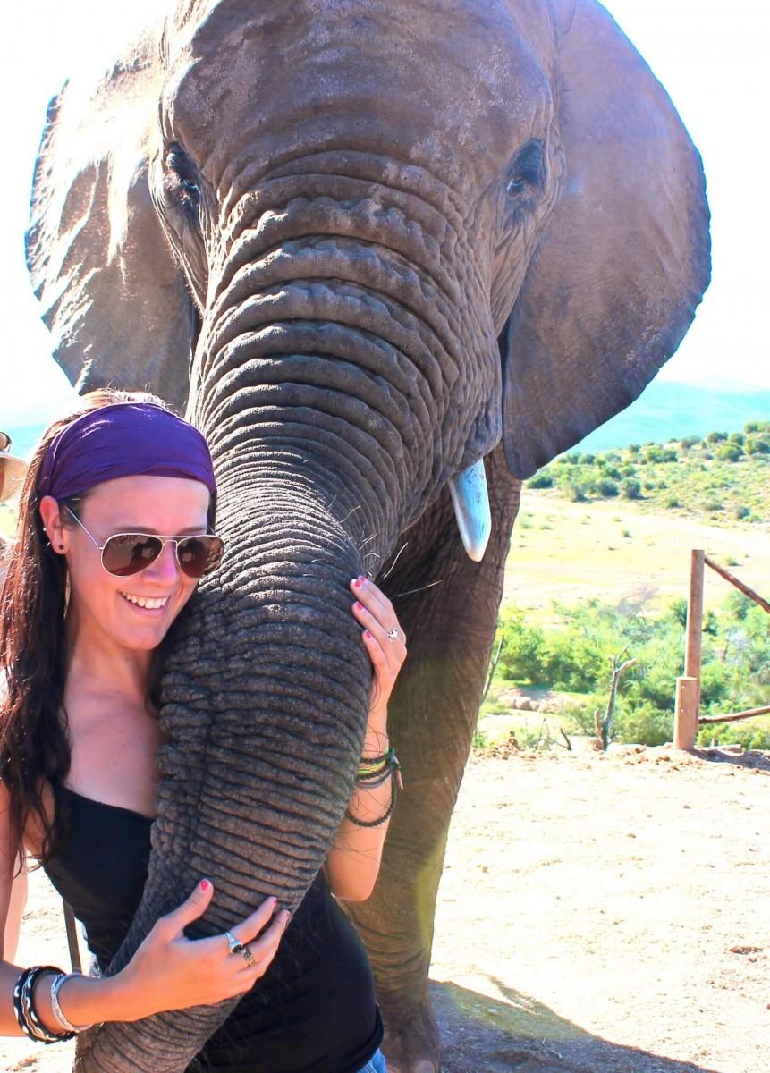 Suitcase Six alyssa-elephant Woman of the Week: Alyssa