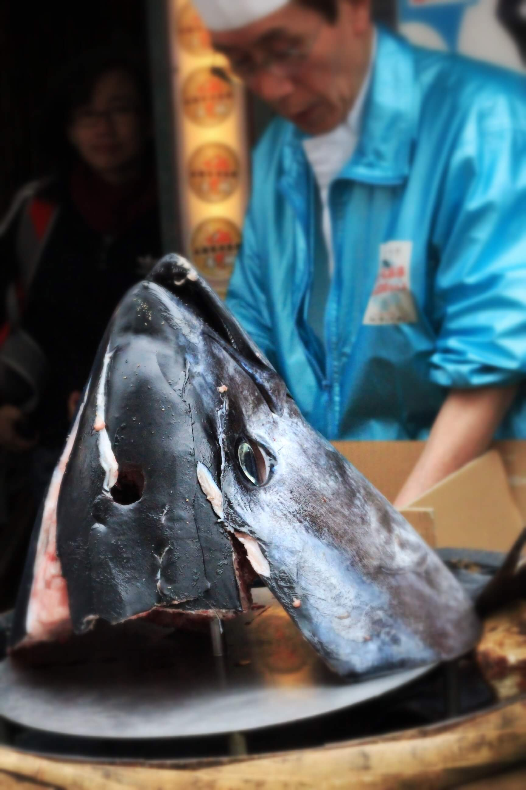 a fish head from tokyo