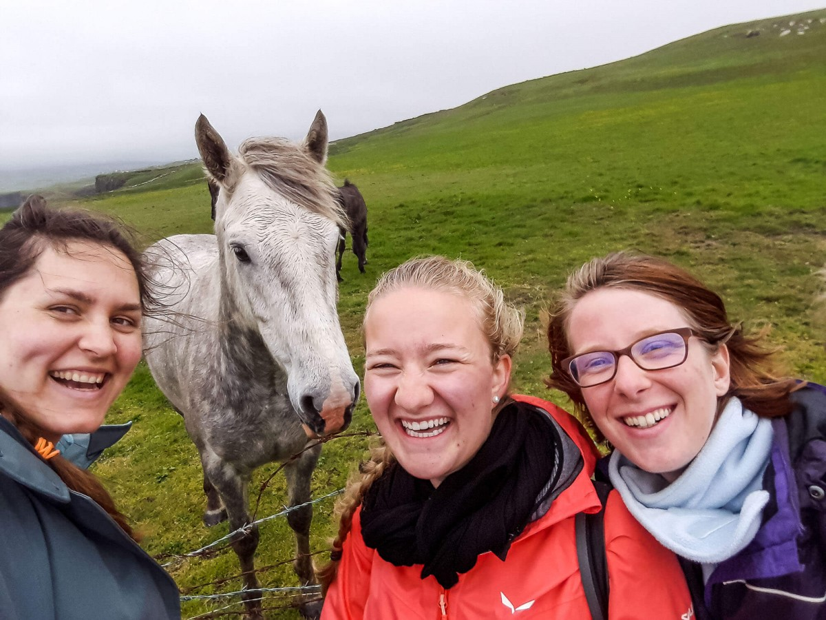 A white horse with grey spots photobombs three women taking a selfie