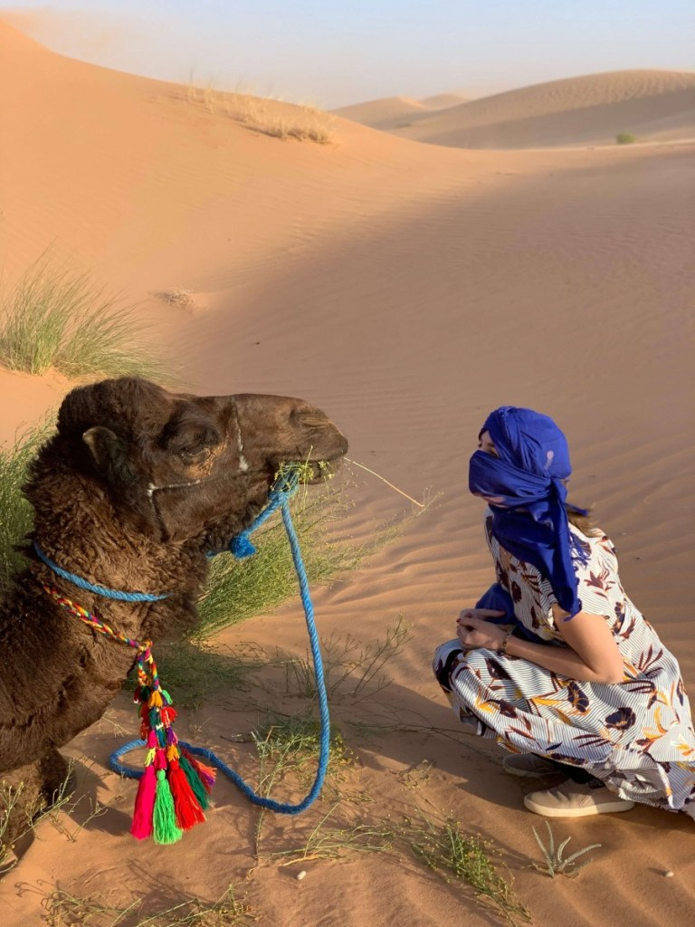 Suitcase Six kneeling-by-camel-768x1024 How I Lost And Found My Phone in the Sahara Desert