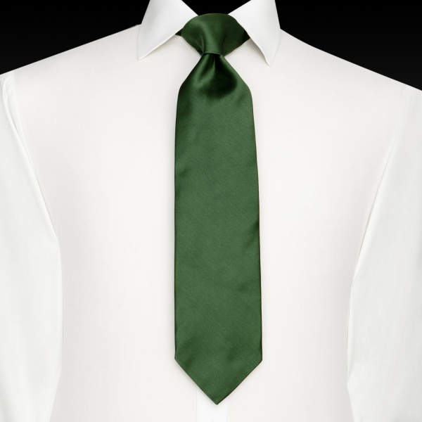 https://i1.wp.com/suitored.com/wp-content/uploads/2010/10/Thomas-Pink-Green-Tulip-Tie-2.jpg