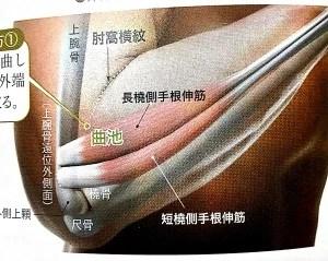 歯槽膿漏 ツボ