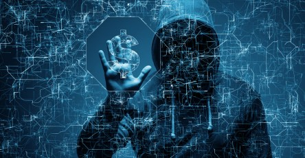 cyber-criminals