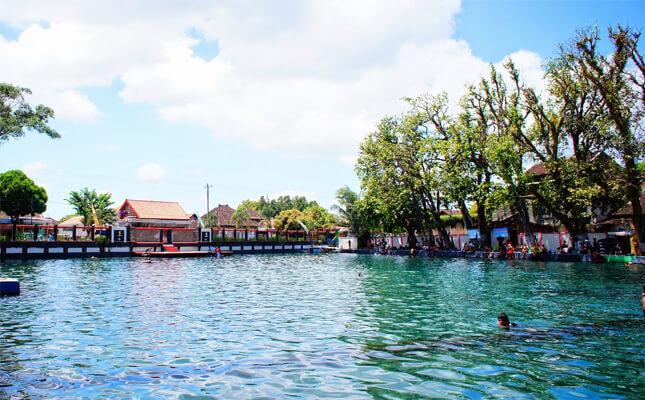 desa ponggok