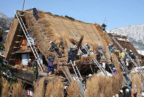 Tradisi Penggantian Atap Shirakawago 3