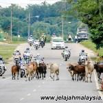 Keputusan Basikal Jelajah Malaysia 2014 Peringkat Ketiga