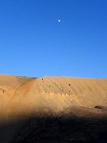 Desert in the Skies