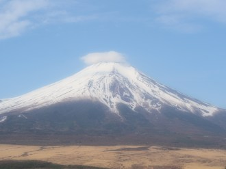 Fuji View 16