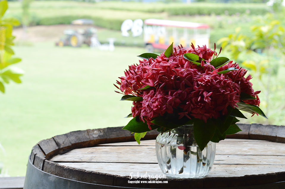 PB Winery Khaoyai