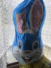 The Easter bunny arrived!
