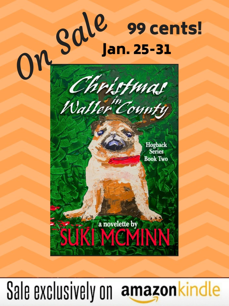 christmas in kindle special poster