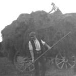 Farming02w